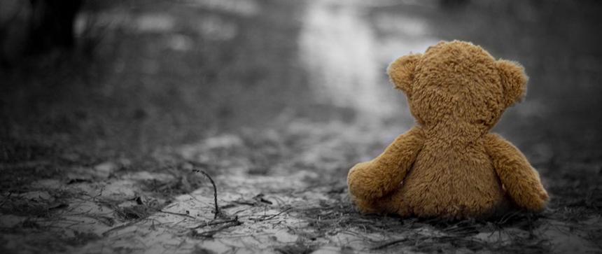 Ours seul sur le chemin